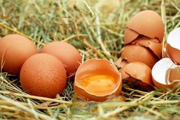 Тухлые яйца